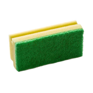 Large Sponge Green